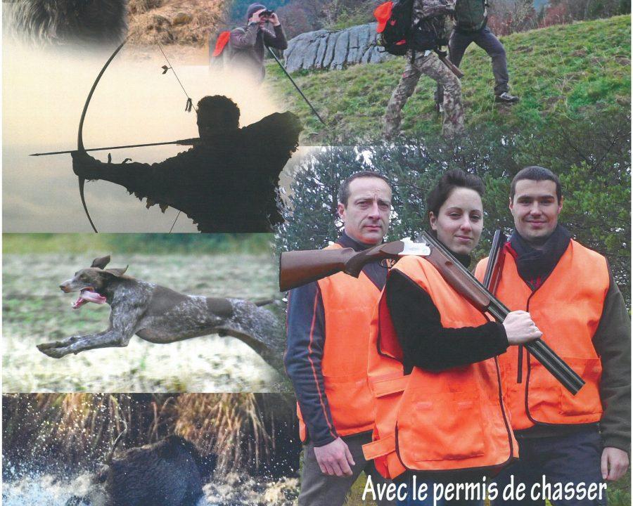 Accueil Federation Departementale Des Chasseurs De Haute Loire